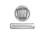 fiat-professional-home